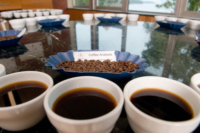 Coffee shelf life samples compared