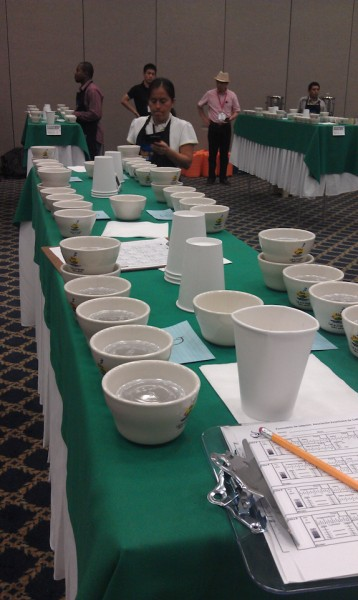 Preparing for a cupping